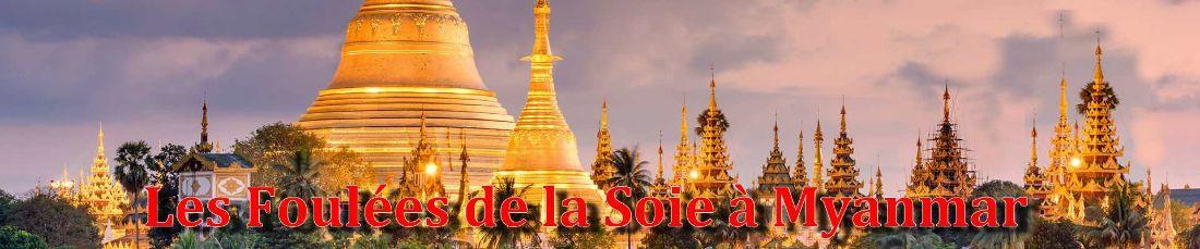 les-fds-a-myanmar