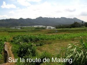 Sur la route de Malang
