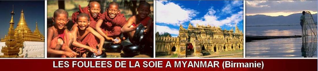 fds-myanmar